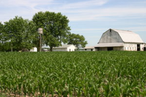 Governor Cuomo Announces Record $35 Million Awarded to Farmland Protection Projects Across New York State