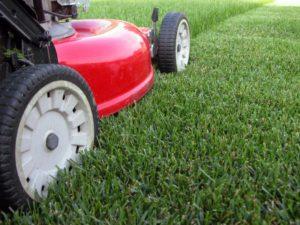 Patterson Advertisement for Bids – Seasonal Lawn Maintenance