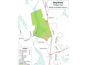 DEC to Conduct Controlled Burn in Bog Brook Unique Area