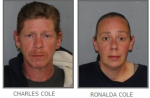 Pleasant Valley couple arrested following homicide investigation