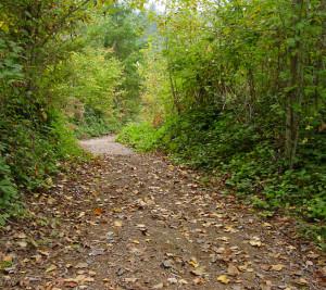 Winnakee Land Trust Launching  Dutchess Trails Roundtable Series,  A Network for Regional Trails Development