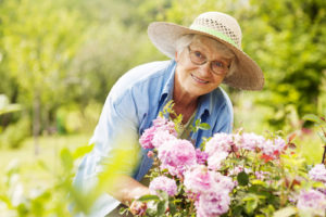 Dutchess County Office for the Aging's AGING NEWS For the week of May 14