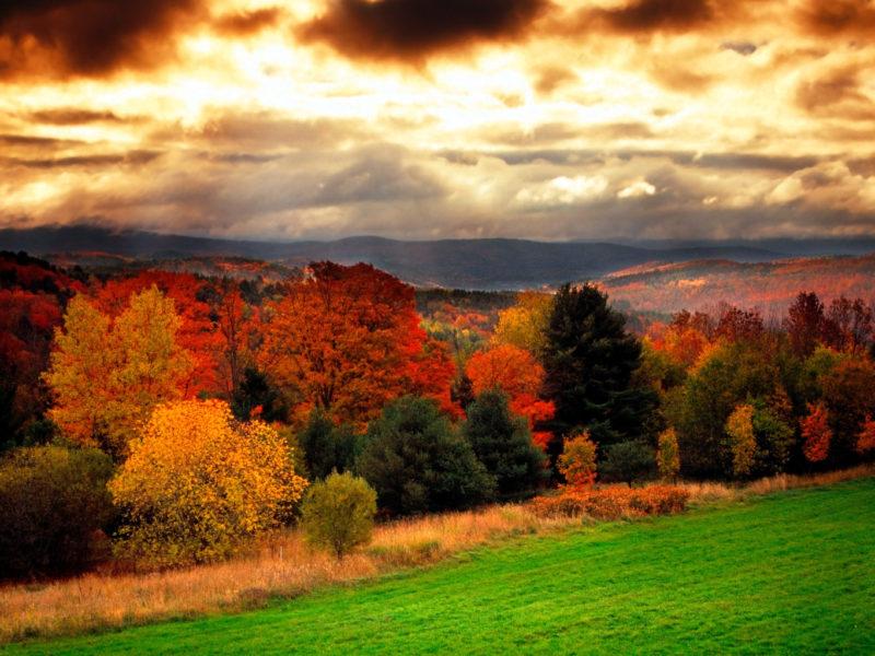 fall-foilage2