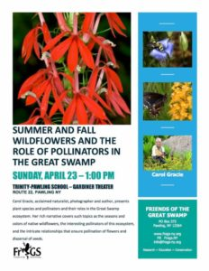 This Sunday, April 23, 1 pm, Carol Gracie, naturalist, photographer, and author presents plants and pollinators of the Great Swamp at Trinity-Pawling School, Gardiner Theater. Brought to you by FrOGS (Friends of the Great Swamp).