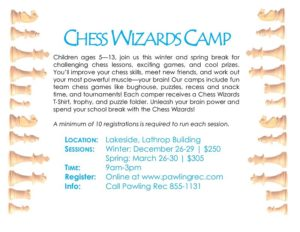 Chess Wizards Camp