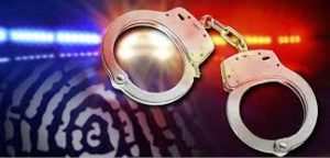 Woman Arrested in Stormville Burglary Investigations