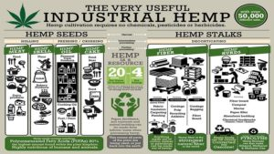 More Than 60 New Industrial Hemp Research Partners Join New York State Pilot Program