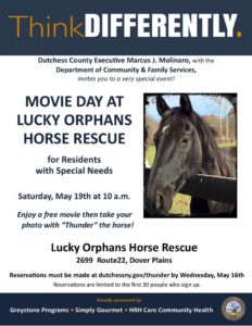 This Saturday's free movie day for residents with special needs atLucky Orphans Horse Rescuein Dover.