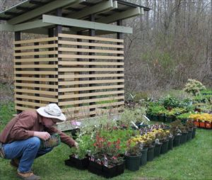 Be-a-Better-Gardener: Consider this Before Investing in Spring Plants
