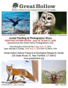 The Great Hollow Photographers club is hosting there first annual art and photography Show this weekend
