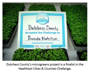 County's Award-Winning Microgreens  Project Garners National Attention