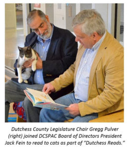 Molinaro Encourages Children to Read to Animals at DCSPCA as Part of 'Dutchess Reads'