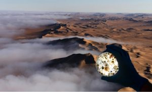 Microbes hitch a ride inland on coastal fog