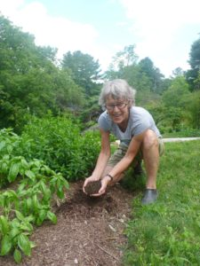 Be-a-Better-Gardener – Soil Know-How