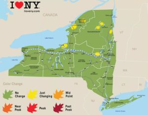 New York Fall Foliage Report