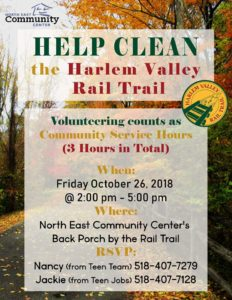 Help Clean The Harlem Valley Rail Trail