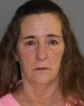 Amenia woman arrested following disturbance at Webutuck Middle School