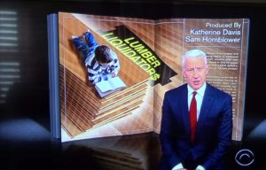Lumber Liquidators sold illegal flooring, '60 Minutes' says