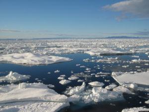Arctic Sea Ice's Winter Peak Is Lowest on Record