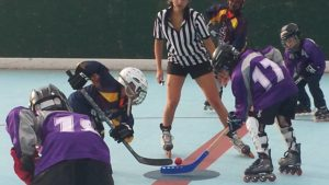 Teams are now forming for the 2015 Summer Roller Hockey season