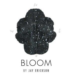 The work of Jay Erickson