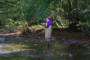 DEC Seeks Volunteers and Local Coordinators to Conduct Stream and River Monitoring