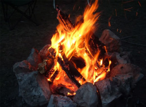 DEC: Campfires, Recreational Fires and Outdoor Cooking Fires Will Be Allowed Due to Downgrade of State's Fire Danger Rating  Milder Temperatures and Rain Forecasts Reduce Fire Risk Across the State