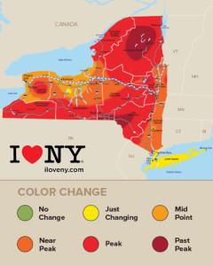 New York Fall Foliage Report