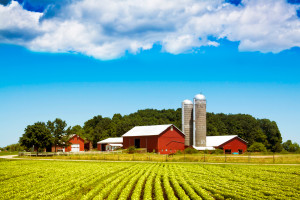 Governor Announces Extension of Real Property Tax Exemption on Farm Buildings