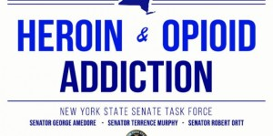 Senate budget includes $167 mil for heroin prevention, treatment