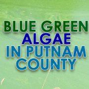 Blue-Green Algae Arrives Early in Putnam County