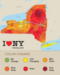 Bright, beautiful peak colors spread across New York State this week.