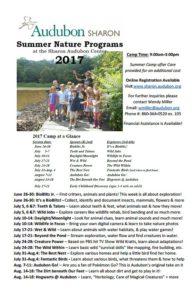 Audubon Sharon Summer Programs