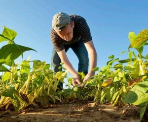 Maloney Statement on Farm Bill Committee Markup