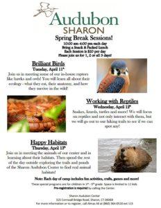 Sharon Audubon Spring Break Sessions