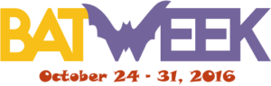 DEC Reminds Public to Avoid Caves and Mines to Protect New York's Bat Populations