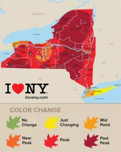 Final New York Fall Foliage Report 2017