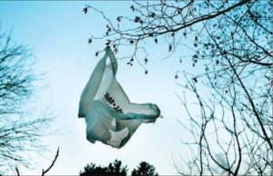 Governor Introduces Program Bill Banning Single-Use Plastic Bags in New York State