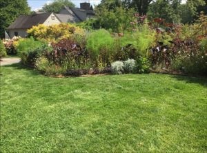 Be-a-Better-Gardener: The Secret to Fall Lawn Care: Less is More