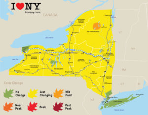 New York Fall Foliage Report, Week of September 26–October 2, 2018