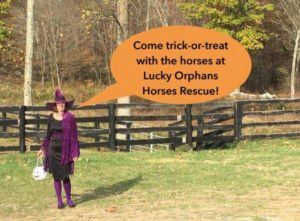 TRICK OR TREAT AT A HORSE FARM!