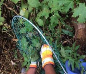 DEC Environmental Conservation Police Officer Highlights for Late September