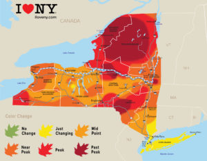 New York Fall Foliage Report, Week of October17 – 23, 2018