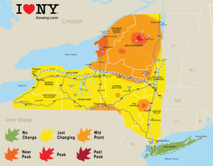 New York Fall Foliage Report, Week of October3-9, 2018