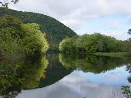 Housatonic Valley Association receives a grant to plant over 3000 trees and shrubs along local waterways