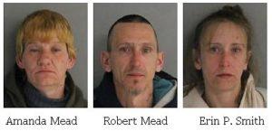 Three residents of Livingston Manor arrested Burglary 2nd Degree