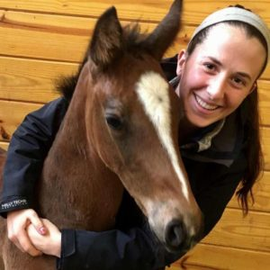 Fatal horsing accident in Dover