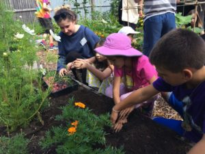 Be a Better Gardener, Gardening with Children