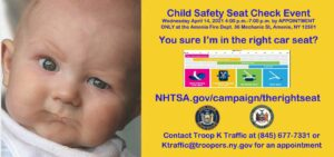 Child passenger safety event in Amenia